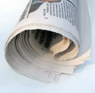 rolled-up-newspaper