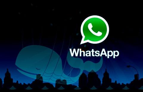 Ballena de Whatsapp ;)
