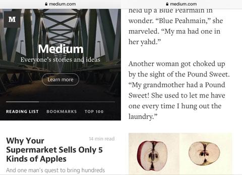 Web de Medium
