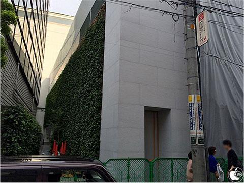Muro de plantas