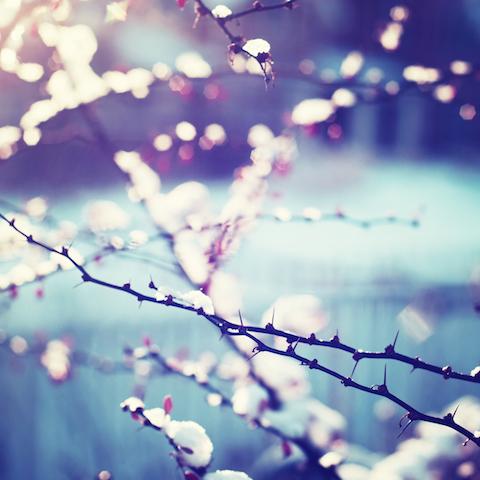 Fondo de pantalla semanal 12 escenas invernales en iphoneros for Immagini inverno sfondi