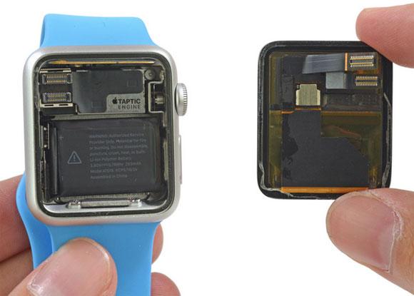 Dentro del Apple Watch