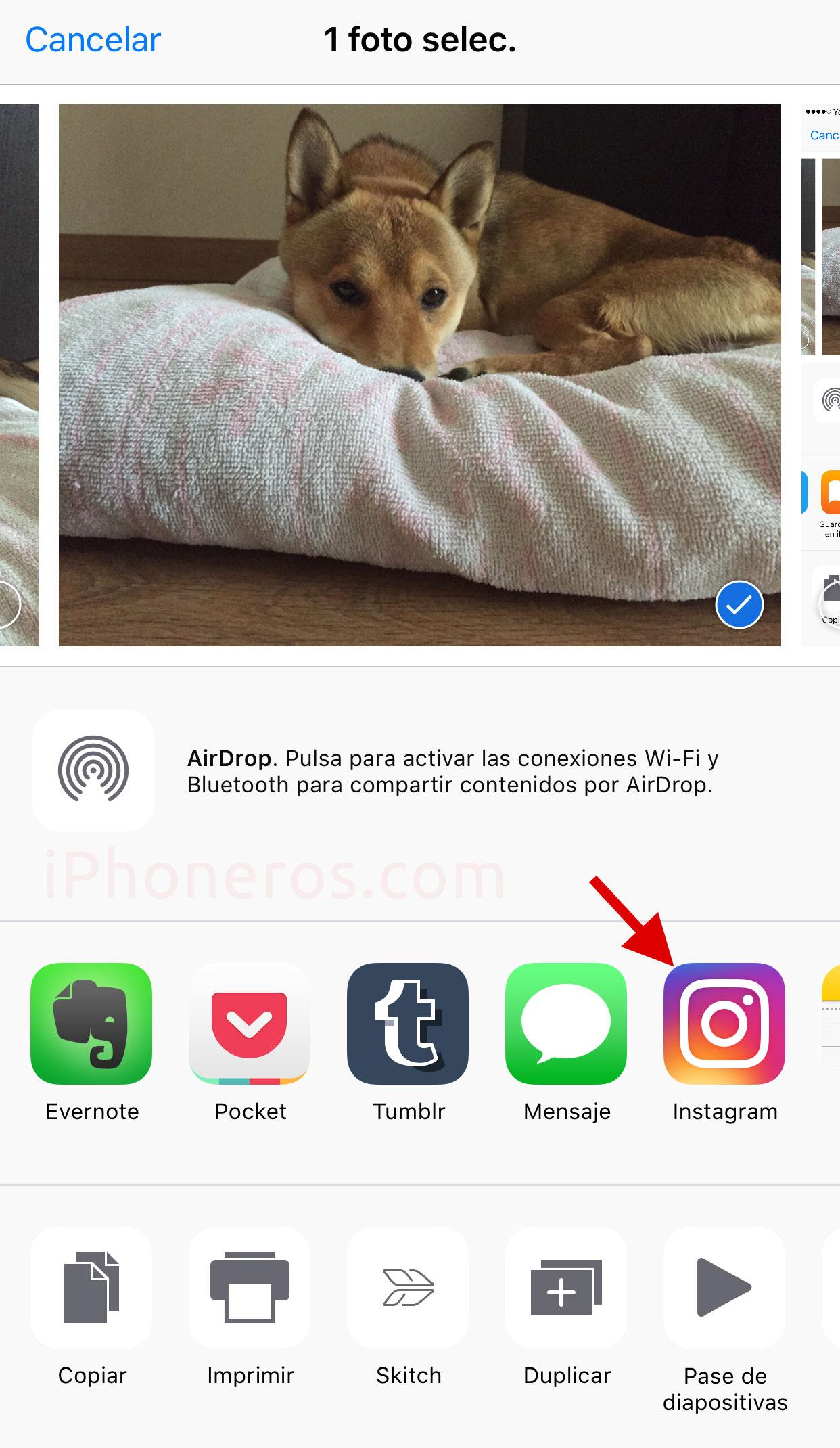 Compartir una foto con otras Apps desde la App de Fotos