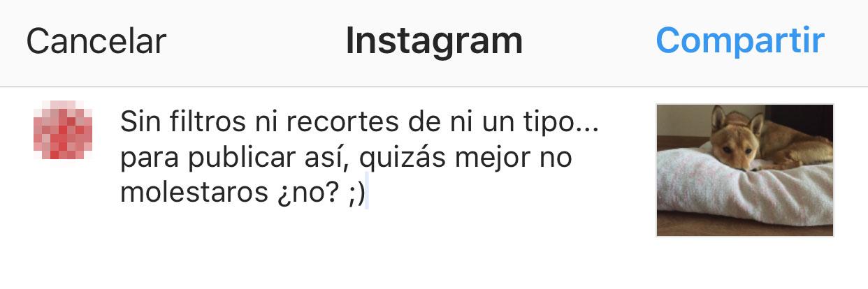 Compartiendo una foto en Instagram desde la App de Fotos