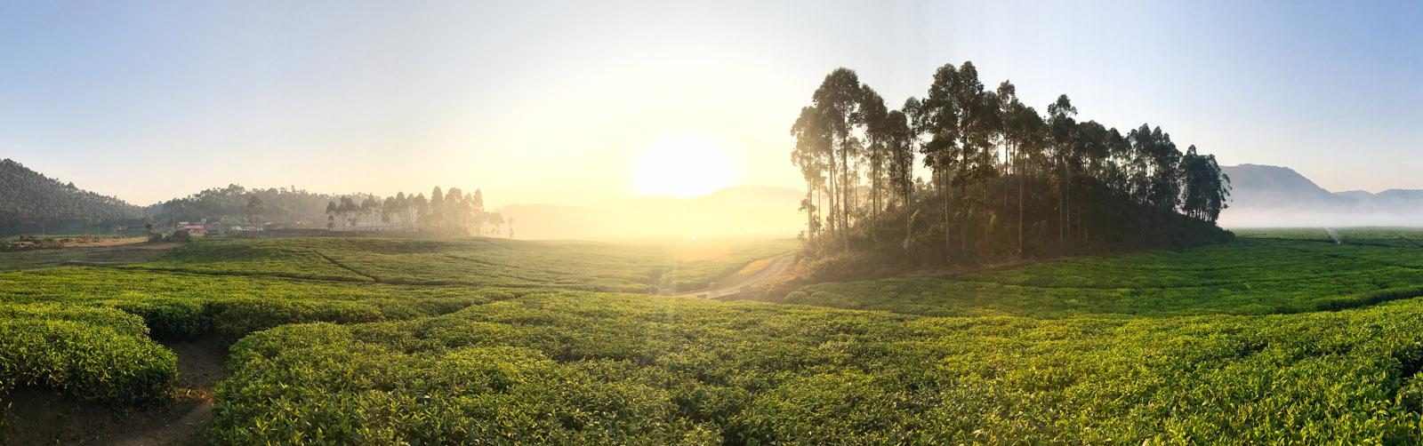 Panorama en África de Austin Mann hecho con un iPhone 7
