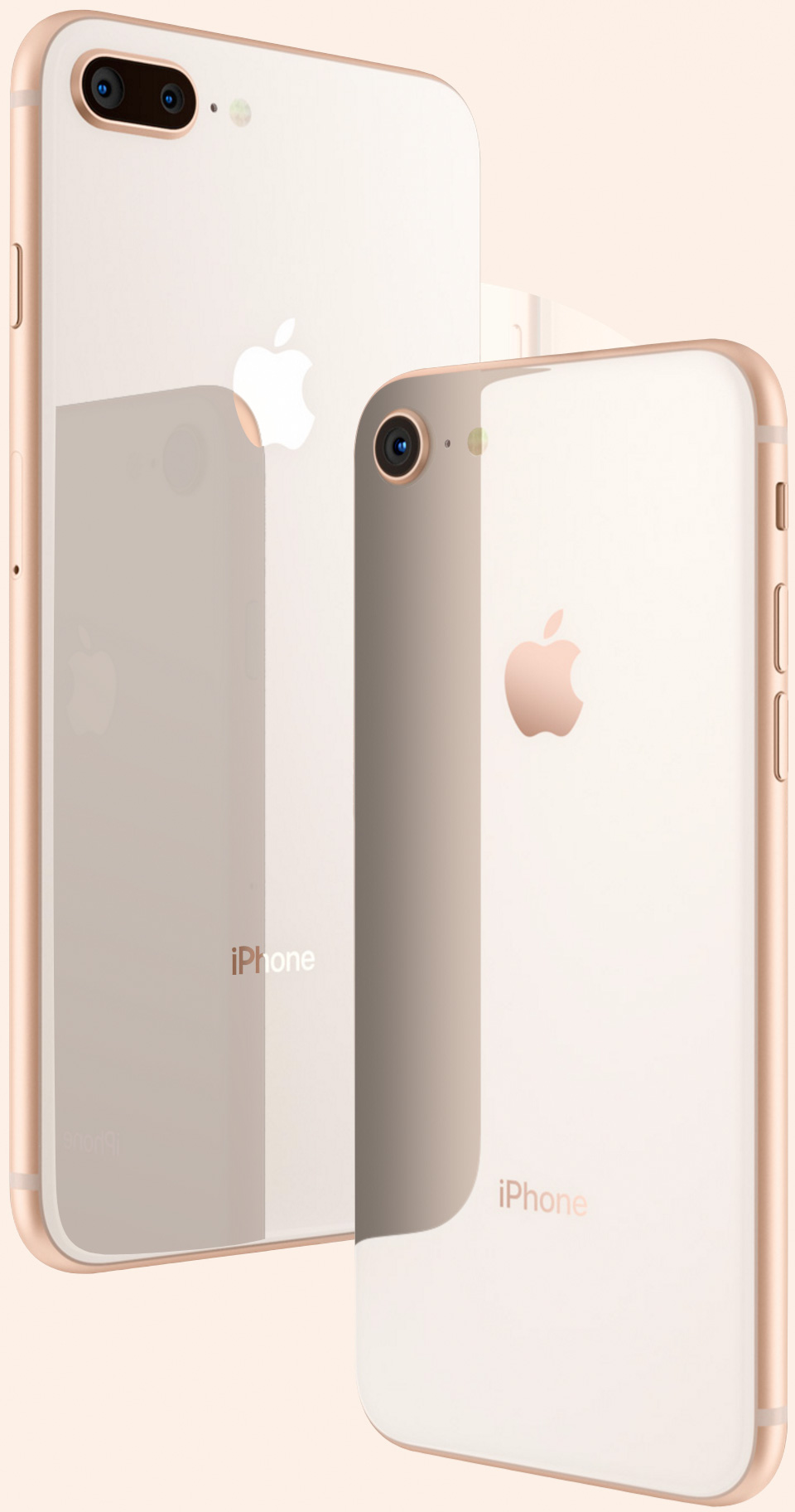 iPhone ocho y ocho Plus dorados