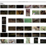 Lista de vídeos sin información en la App de Fotos