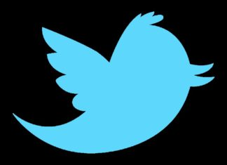 Pájaro de Twitter con fondo negro (logo)