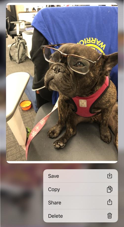 Opciones para compartir o borrar una foto en la App de Mensajes