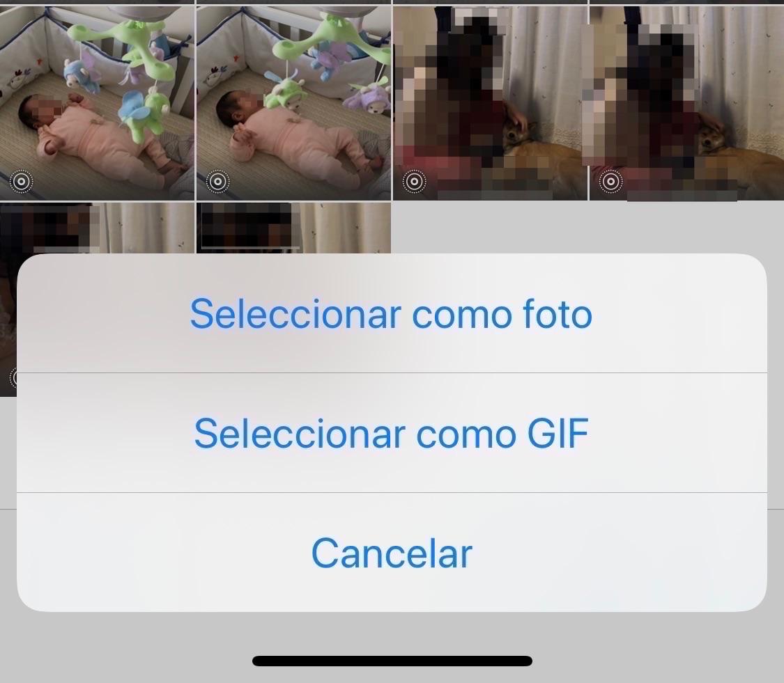 Enviando una Live Photo como GIFs en WhatsApp