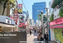 Look Around en Japón