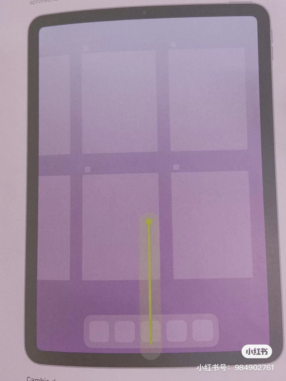 Manual del iPad Air filtrado