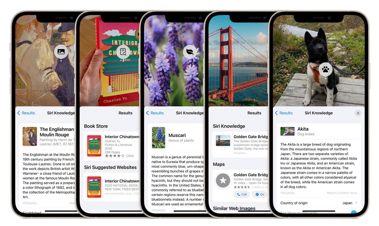 Reconocimiento de imágenes en iOS 15