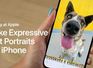 Today at Apple - Cómo hacer fotos de perros y gatos